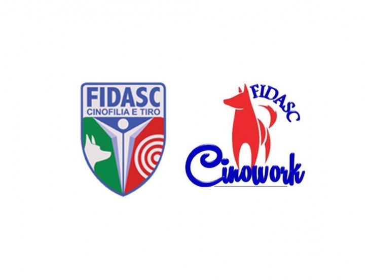FIDASC Cinowork