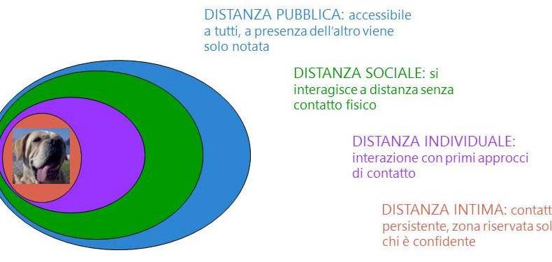 Prossemica: l'uso dello spazio